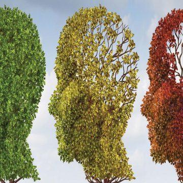 Controle de doenças crônicas pode evitar 1 em cada 3 casos de demência