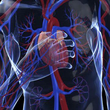 Vacina Colesterol e Doenças Cardíacas