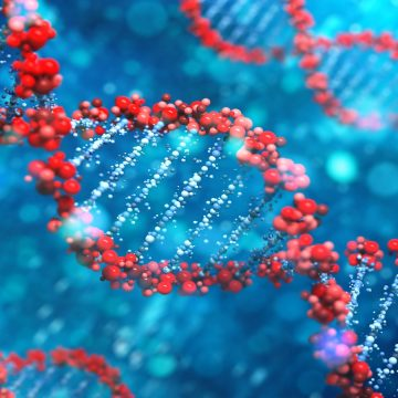 Equidade: STF reconhece existência e peculiaridades de doenças raras