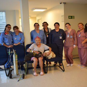 IBCC promove visita PET e emociona pacientes e profissionais. Contato com animais transforma o ambiente e leva alegria.