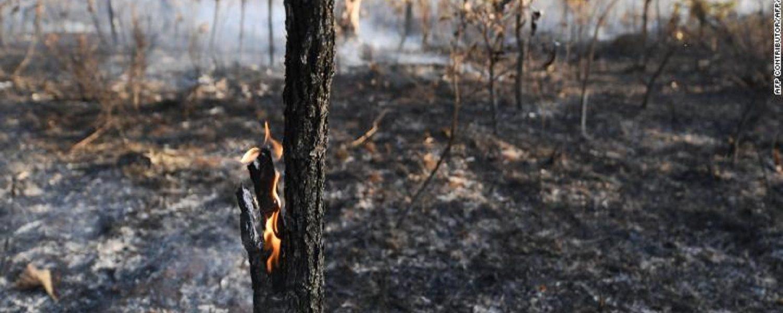 Fumaça de queimadas é ameaça à saúde pública, alertam médicos