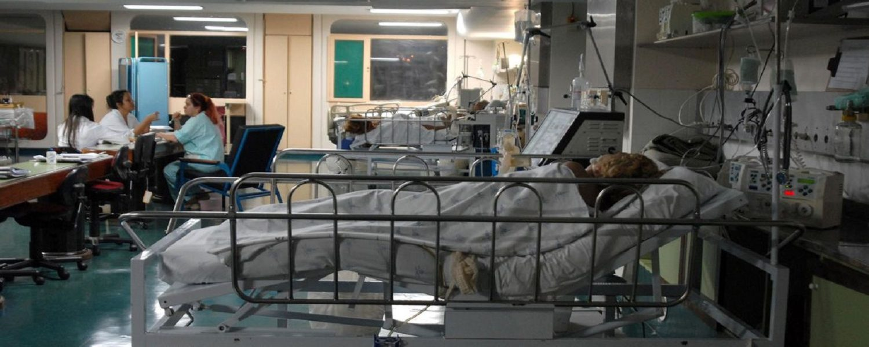 Hospitais públicos poderão utilizar ferramenta de dados da rede privada de excelência para aprimorar gestão e resultados