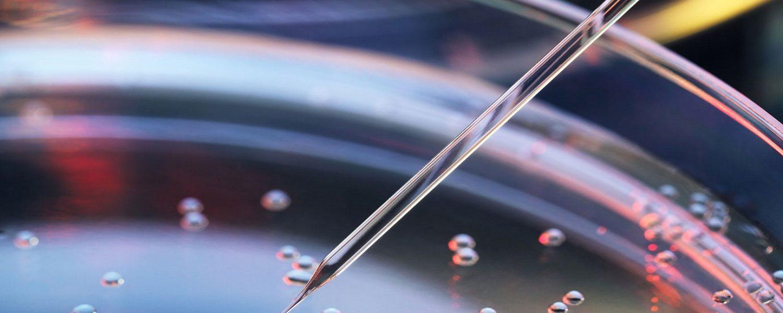 Como a terapia celular reprograma as células do paciente contra o câncer